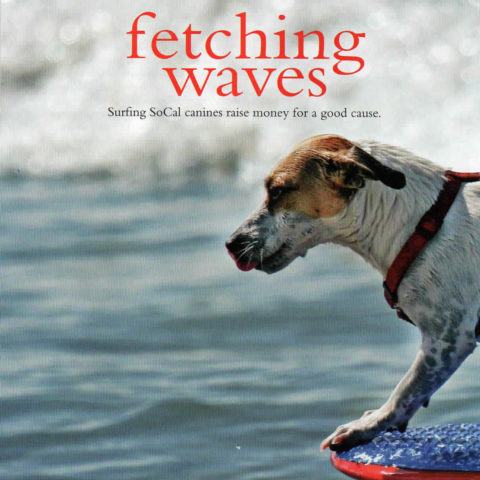 Fetching Waves